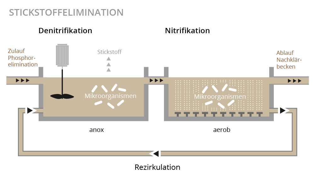 Illustration Stickstoffelimination
